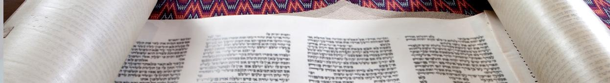 image of a Torah for Shavuot